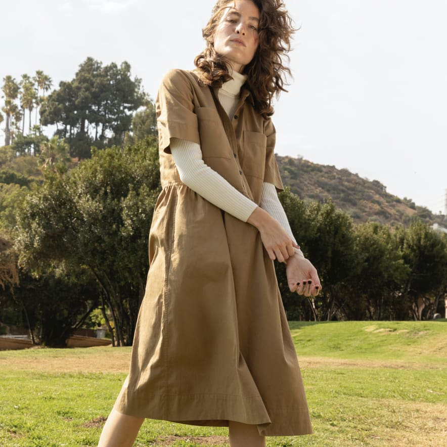 Everlane Parklet Shirt Dress