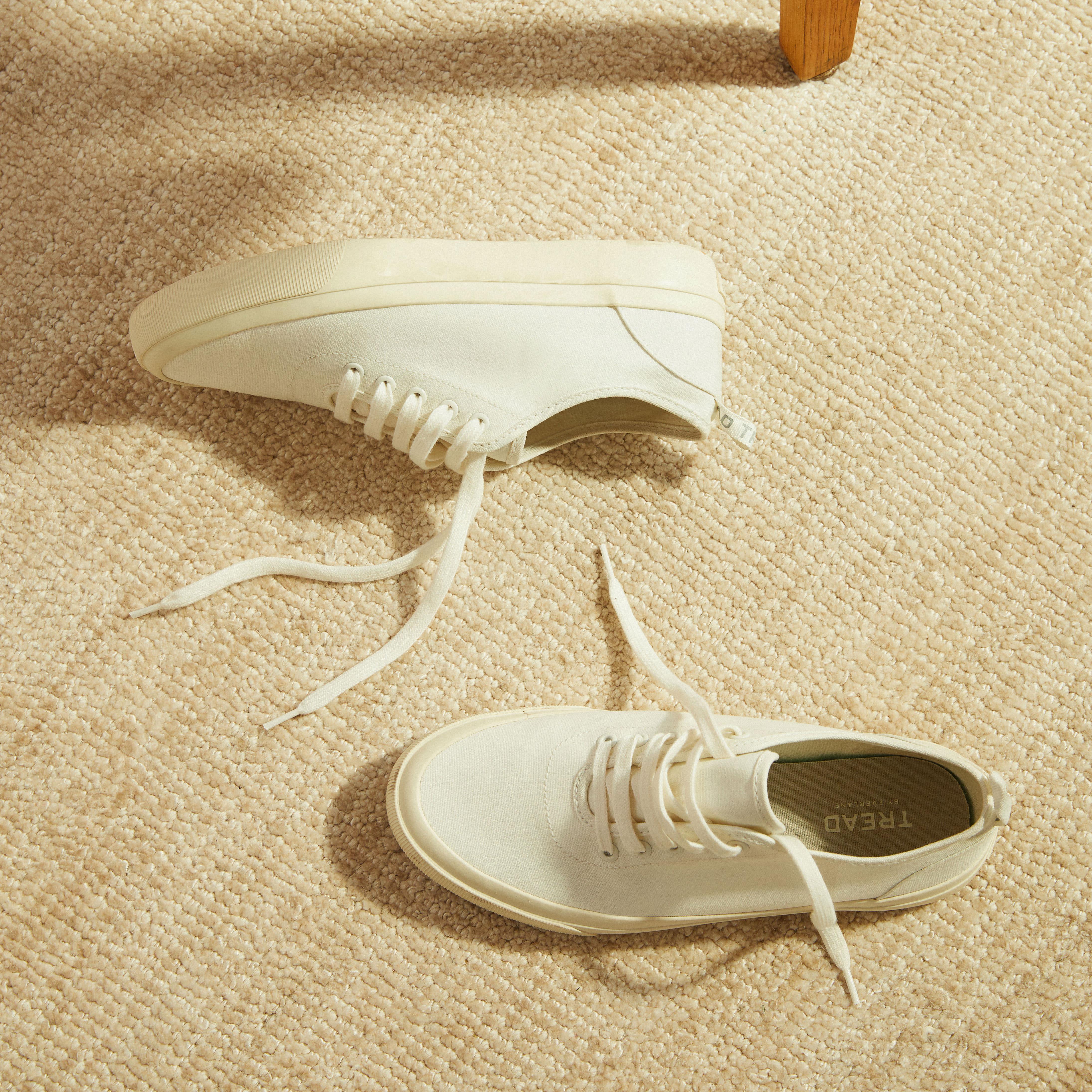 The Forever Sneaker | Everlane