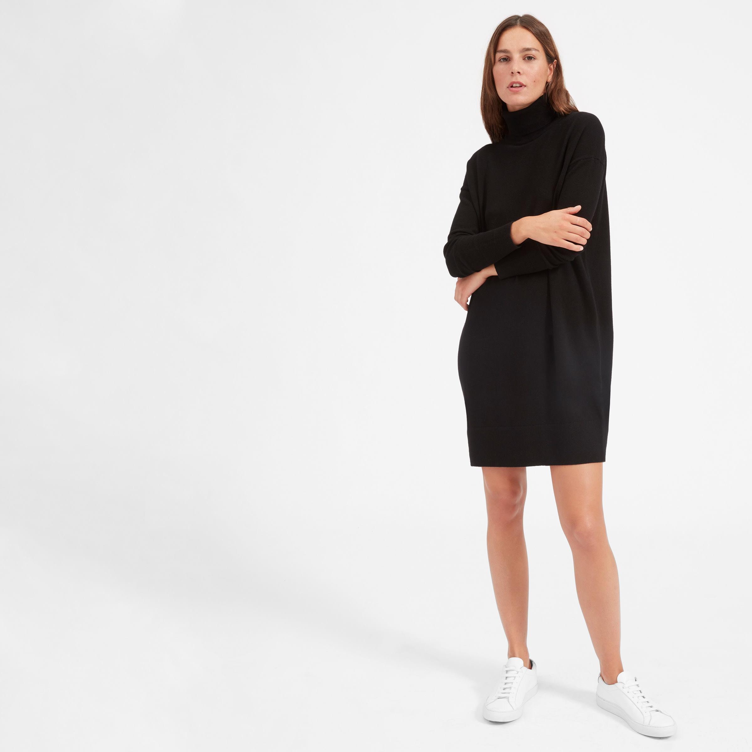 The Cashmere Turtleneck Dress | Everlane